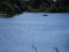 lake_2008